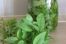 Αρωματικα Φυτα στο φαγητο