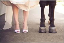 paard & bruiloft