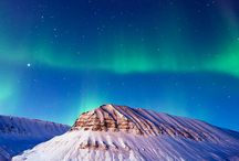 Wanderlust for Svalbard / A collage of all that I hope to experience when I visit Svalbard