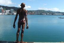 Wellington Art / The heart of Wellington Art