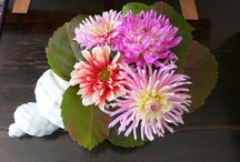 Gardens, flowers and bouquets / Fresh flowers and bouquets from Villa le Barone 's gardens are always expecting our guests
