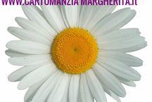 Cartomanzia Margherita / Lettura di carte Tarocchi