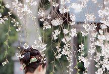 Kimonos lindos ! / Arte de vestir
