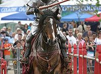 Jousting with Horses