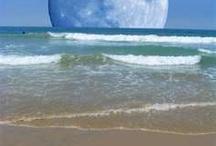 Beach Lover♥