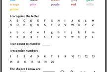 Preschool school report