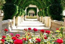 ~ Gardens ~