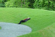 park garden design