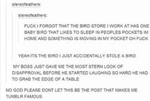 Favorite Tumblr Posts