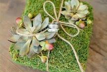 eco theme(green wedding
