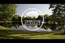 Treeland's Videos / Here we will share videos on topics ranging from tree care, to landscaping inspiration, and more.