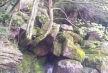 Paisajes y naturaleza de catalunya