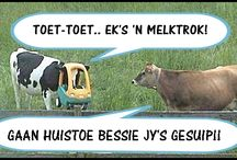 Afrikaans is GROOT