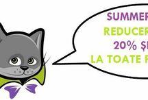 Shop@www.motanulfermecat.ro