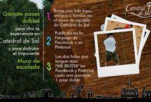Promociones / Promociones 2013