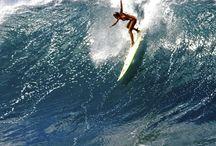 Surf / Surf surf