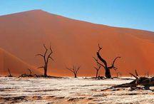 Reiseideen für Namibia / Die ASA-Reiseveranstalter stellen hier Reisevorschläge und einige Ideen für Safaris, individuelle und geführte Rundreisen durch Namibia und die Nachbarländer vor. Haben Sie Interesse an einem bestimmten Vorschlag? Gerne können Sie uns auf www.asa-africa.com/reiseangebote kontaktieren!