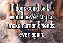 Dogs are human's B.F.F