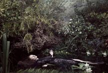 Photography:  Pre-Raphaelite Inspiration