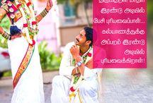 அவளதிகாரம் - மனைவியின் அன்பு அதிகாரங்கள் | செல்லமே செல்லம்