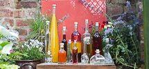 Bottle Ideas / My favourite bottles