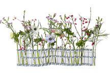 fleurs & vase d'avril