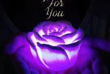 I LOVE PURPLE II / All about the PURPLE!!! / by Laurie Welsh