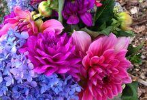 Good Gardens florals