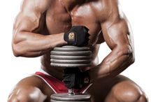 Fitness / Information about Fitness, Nutrition and Bodybuilding