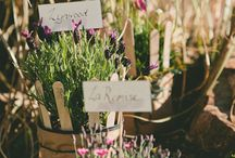 Vintage country reception