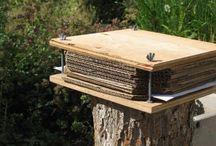DIY: Herbarium