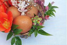 Festive Seasons