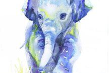 elephants and kangurus