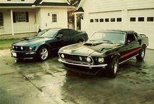 Mustangs / by Sarah Wingffbh
