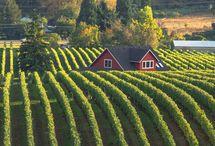Oregon - Home Sweet Home