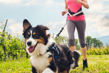 Staying active with your pets.
