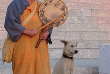 monks + their dogs