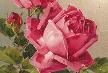 Maalatut ruusut
