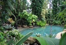 Swimming Pool Design / DISEÑOS DE PISCINAS