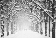 winter . winter