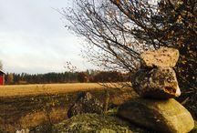 Metsässä 2015 / Jahdista ajomaisemua