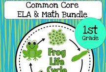 1st grade Louisiana standards/common core