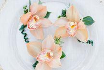floristry week 1