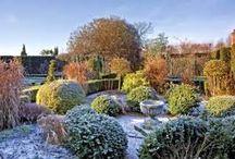 pomysły na ogród, garden / pomysły do wykorzystania w ogrodzie