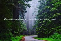 Every destination has its story of yours.  #nature #iamtb #travel #travelgram #explore #explorer #travelquotes #bespoke #planner #ranger