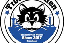 SWS 2017