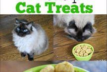 Cat Eats