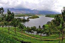 4 Days  Honeymoon package for Rs 8500. / http://travelgowell.in/kerala-honeymoon/4-days-kerala-honeymoon-packages/munnar-cherai-beach.html 4 Days Kerala Honeymoon package for Rs 8500.covering Munnar and Cherai beach.