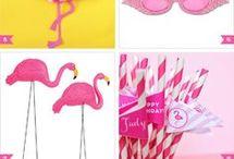 Pool party de flamingos