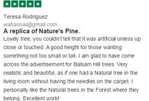 Balsam Hill Reviews
